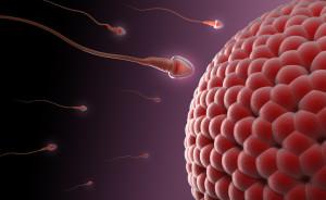 exames de infertilidade